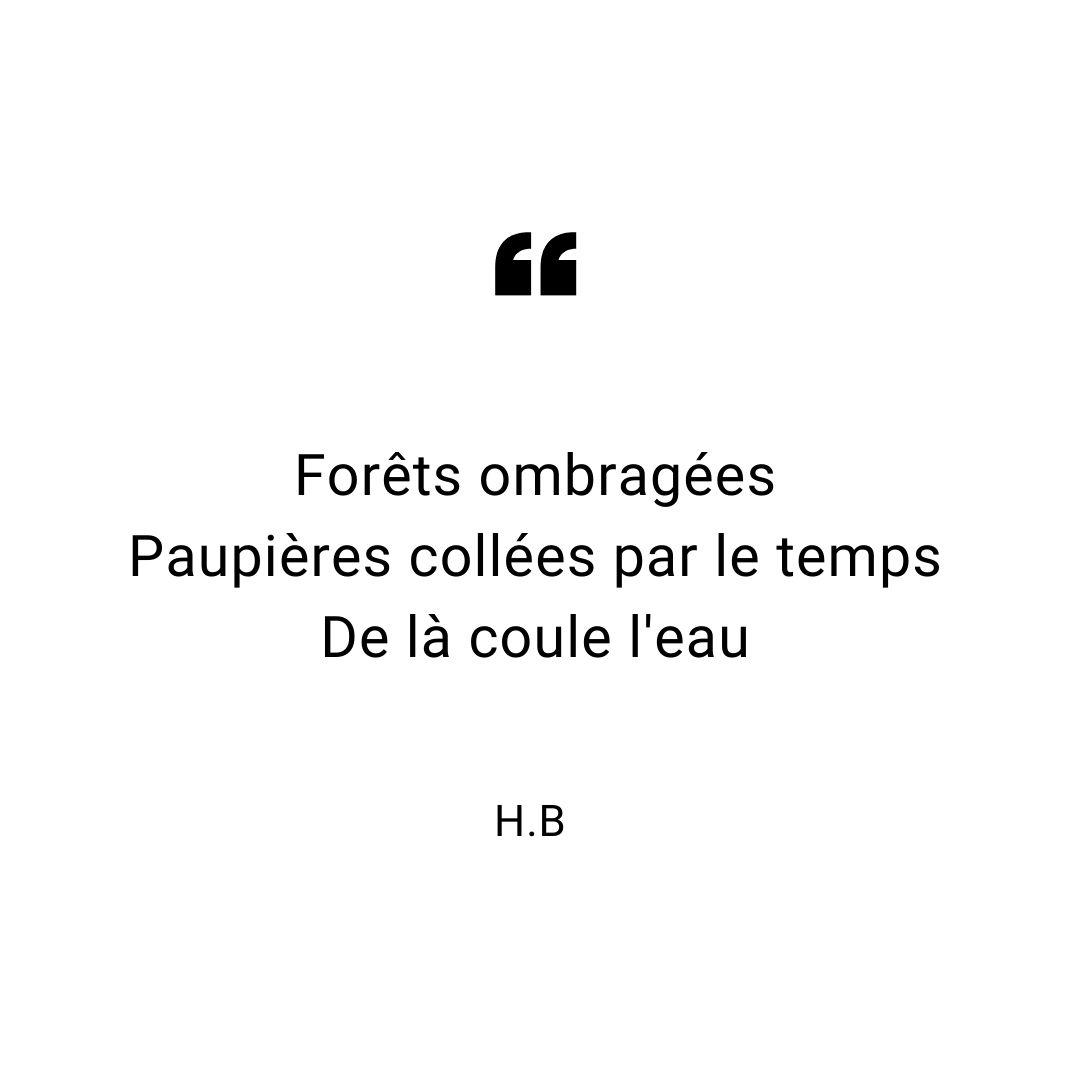 haiku-aout-2019