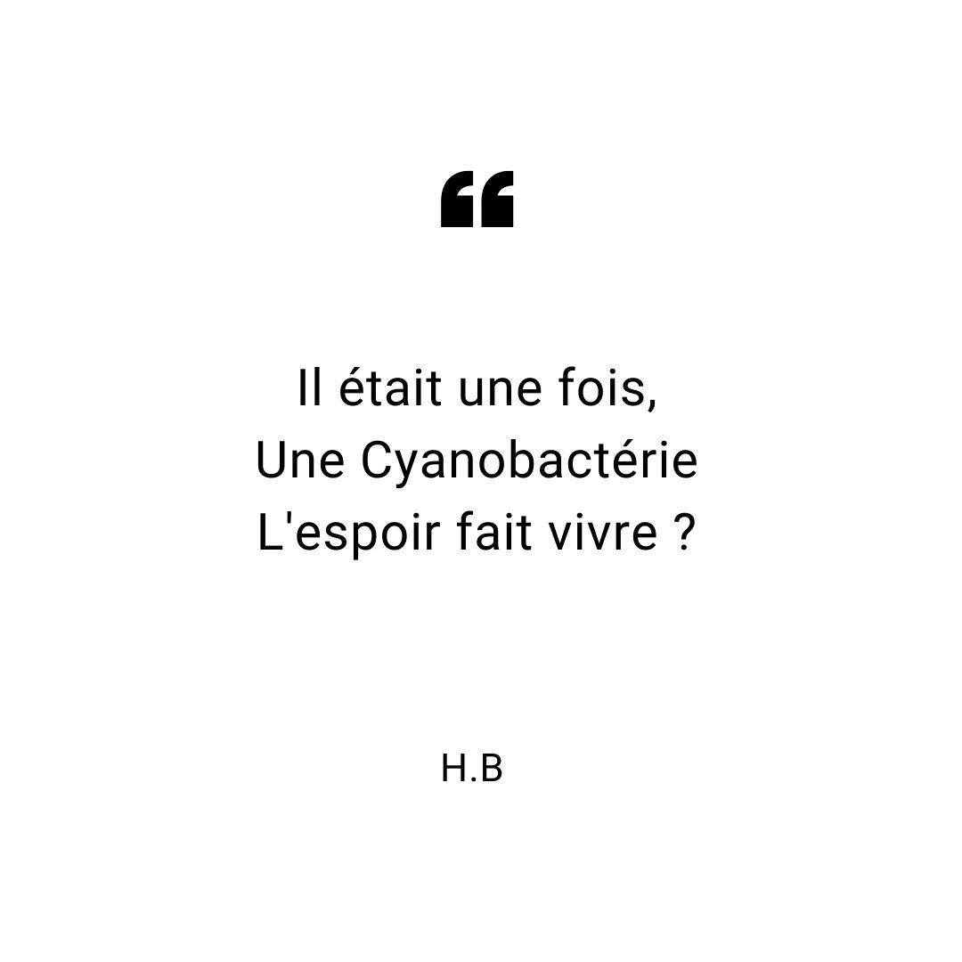 haiku-octobre-2019